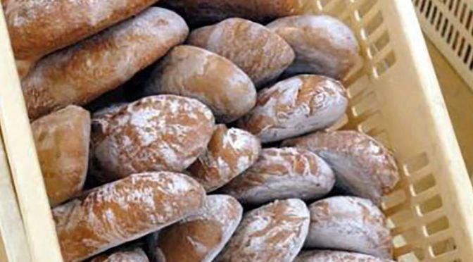 Pane di Altopascio Tradizionale